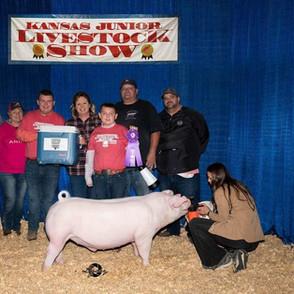 Tayte Leck  Kansas Junior Livestock Show 4th Overall