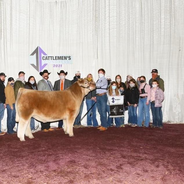 Stewart Skiles  Cattlemen's Congress  Champion Market Steer