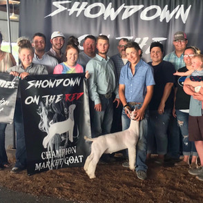 Vogele Family  Showdown on the Red  Grand Overall Market Goat