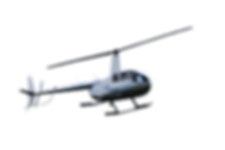 R44 IN THE FLESH.png