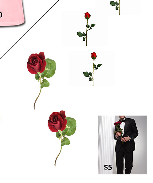Rose, Message, Escort