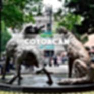 COYOACAN 4X4.jpg