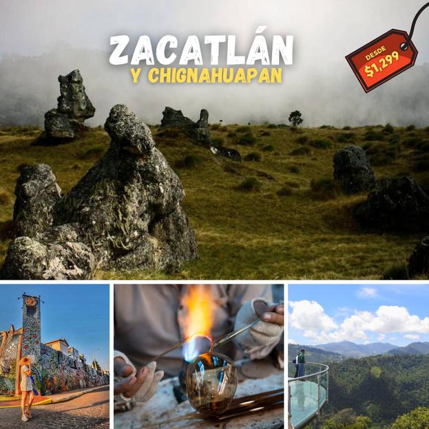 BOST ZACATLAN CHIGNAHUAPAN.png