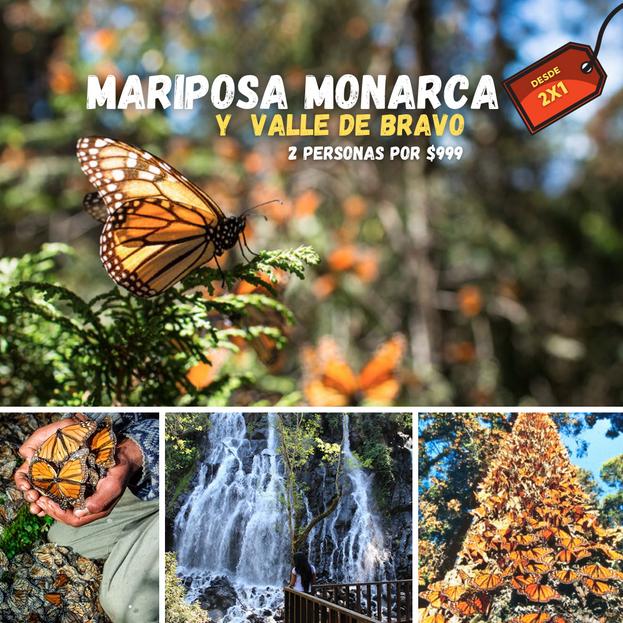 BOST MARIPOSA MONARCA Y VALLE DE BRAVO (