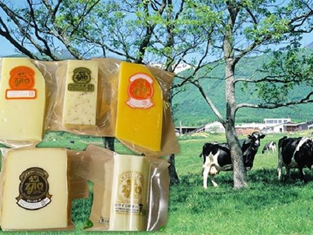 ZAO Cheese