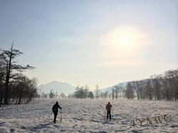 春の尾瀬 歩くスキー
