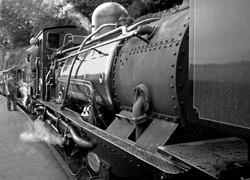 01M;Glynn Marsden;Getting Ready to Steam