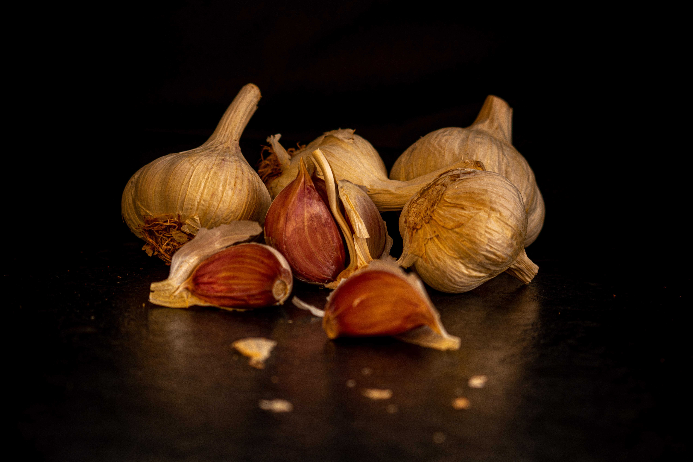 01C Anita Abdous; garlic