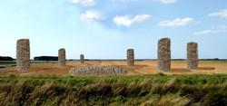 02;Glynn Marsden ;Field of Wheat