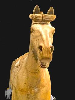 185 - Terracotta Horse Liverpool By John Crooks