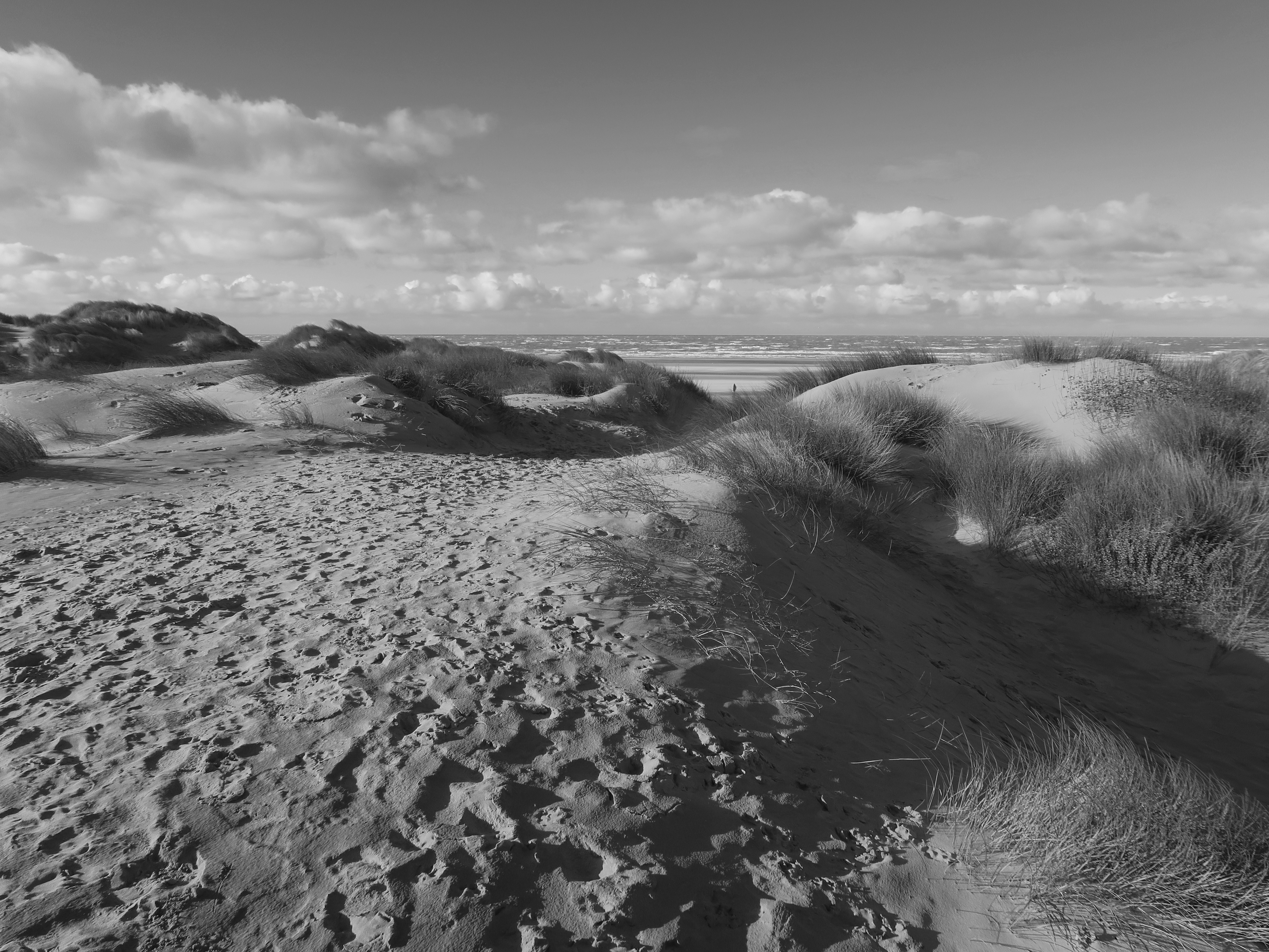 01M;Andrew Kent;Dunes