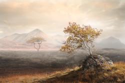 105 - Autumn Prelude BY Kathryn J Scorah MPAGB FBPE EFIAP
