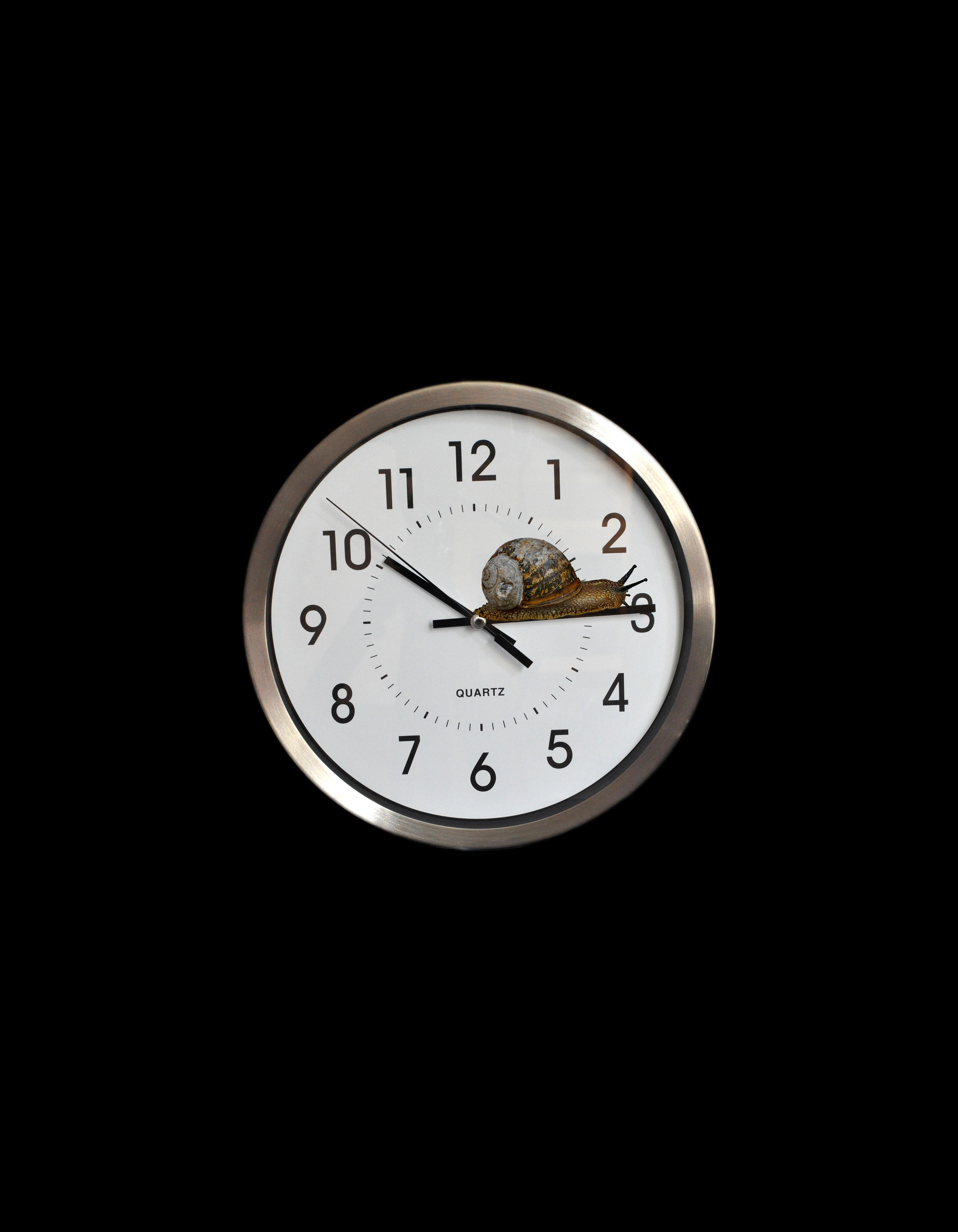 01;Amanda ScottNorton ; Time goes by so