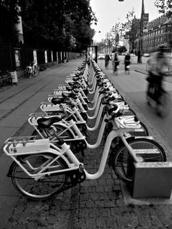 Mon 01 Copenhagen Bikes, StephanieWilliamson