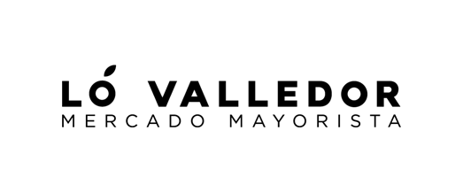 lo_valledor_logo_fixed