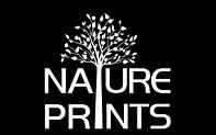 nature 1.png