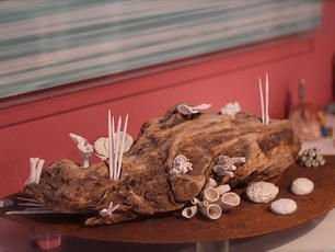 Coral Sculpture In Wood