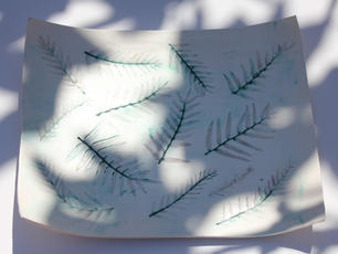 Oxide Platter