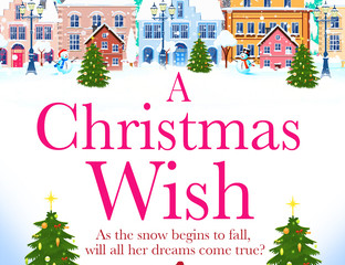 Review & Giveaway - A Christmas Wish by Erin Green