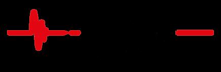 logo-HSS.png