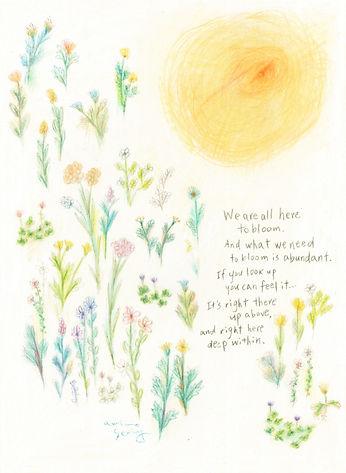 flowers&sun_wixのコピー.jpg