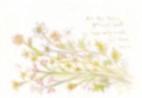 wildflowers_i_wixのコピー.jpg