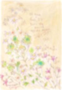 wildflowers_j_wix.jpg