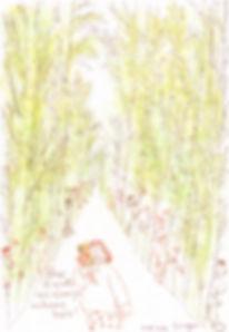 imastu woods_wix.jpg