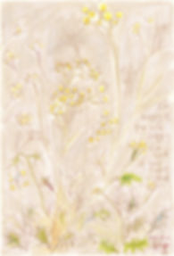 wild flowers_d_wix.jpg