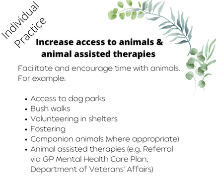 Increaes access to animals & animal assisted therapies