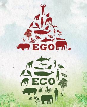 EGOvsECO_banner_edited_edited.png