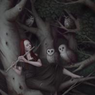 Dark Forest Sonata