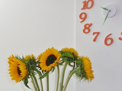 FGR-Sunflowers