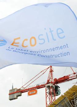 drapeau écosite