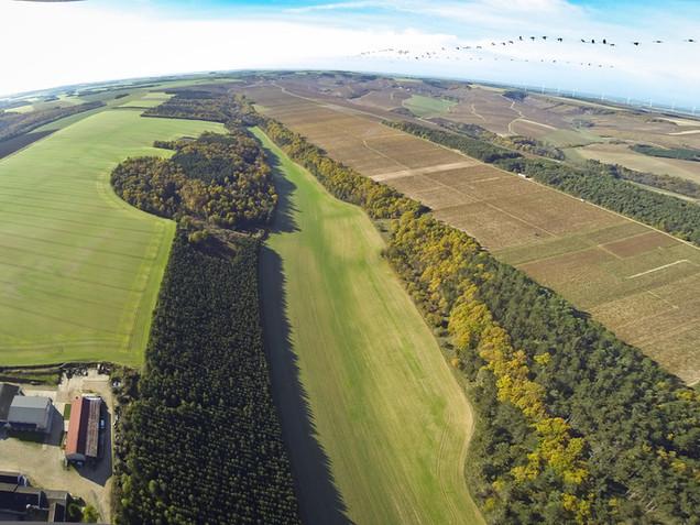 Domaine de Vauroux, Vins, Chablis, Olivier Tricon, 9.jpg