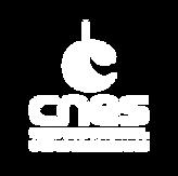 logo CNES.png
