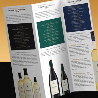 DRS-Brochure2-web.jpg