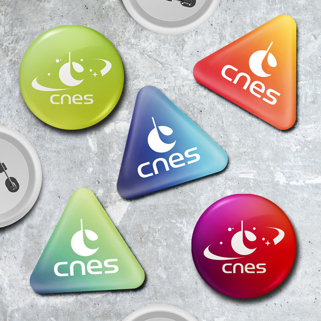 CNES-Badges-ALL-web.jpg