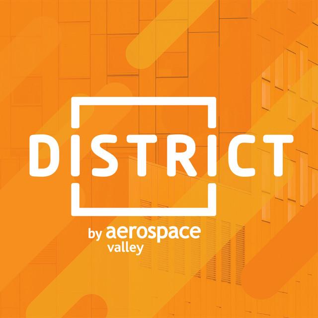 DST-Logo-web.jpg