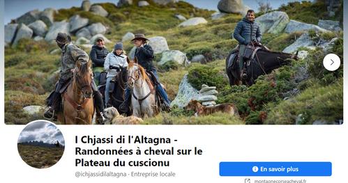 I Chjassi di Altagna - Cheval sur le plateau du Cuccione