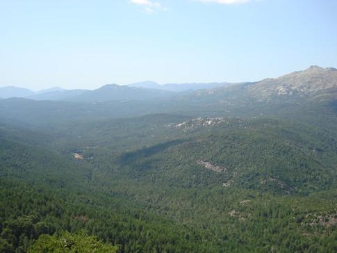 Tour des Aiguilles de Bavella, panarama du sommet