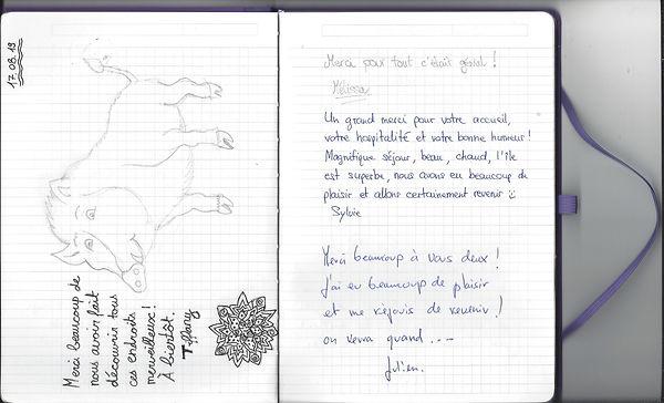 page 15.jpg