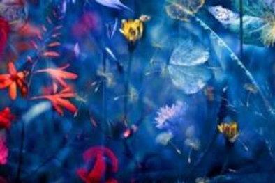 Цветы. Фартуки с эффектом мерцания (МДФ) 610х2800х6