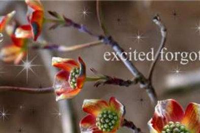 Цветущее дерево. Фартуки с эффектом мерцания (МДФ) 610х2800х6