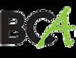 BCA Improv4Business Client