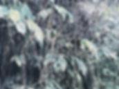 Cascada._86x70cm._Lápiz_tinta_y_acuare