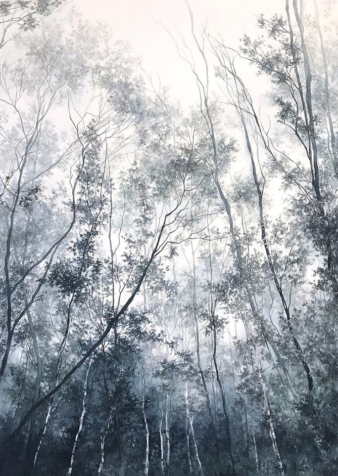 Niebla Valdiviana