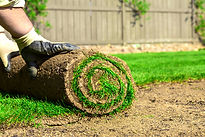 lawn basingstoke, lawn hampshire, lawn berkshire, artificial lawn basingstoke, artificial lawn hampshire, artificial lawn berkshire, turf basingstoke, turf hampshire, turf berkshire, gardening basingstoke, gardening hampshire, gardening berkshire