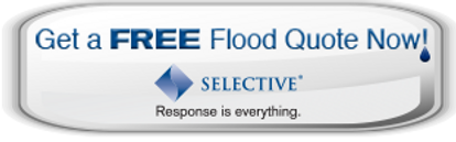 Selective Flood Quote