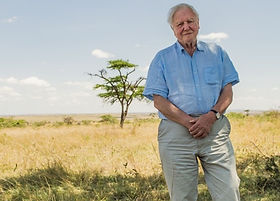David Attenborough.jpeg